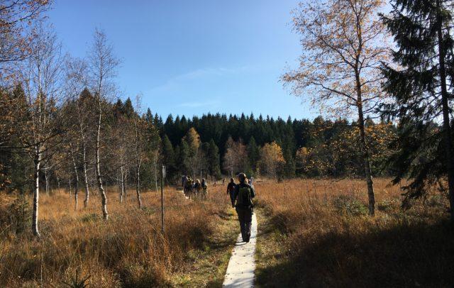 GVA Fachworkshop Naturvermittlung im Naturpark Nagelfluhkette (c) Vorarlberg Tourismus